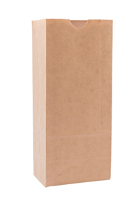 Natural Kraft Paper Bags with No Tin Tie